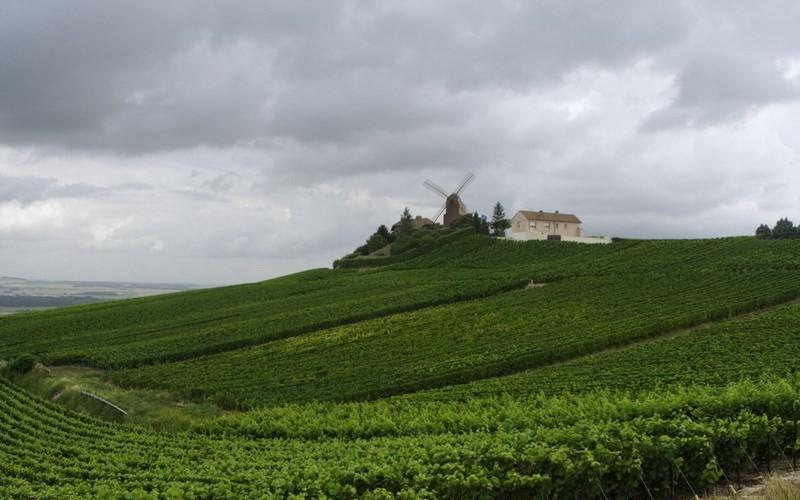 Фото: Шампань - Достопримечательности Франции: ТОП-16