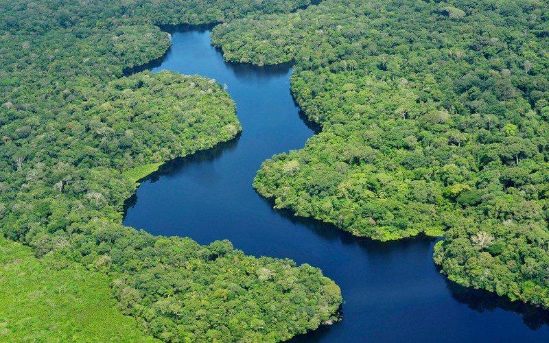 Фото: Река Амазонка Достопримечательности Бразилии: ТОП-14