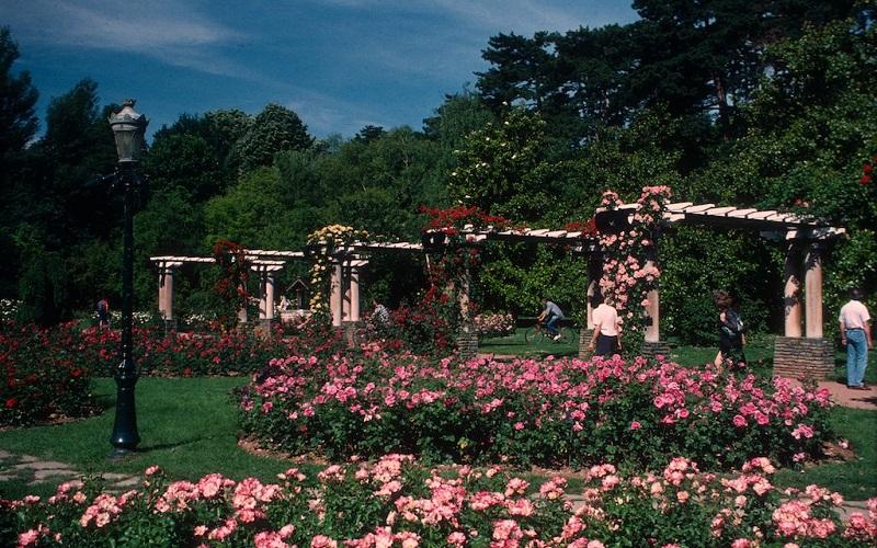 Фото: Ботанический сад - Достопримечательности Лиона