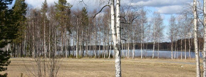 Фото: Лулео, Швеция - путеводитель, лайфхаки