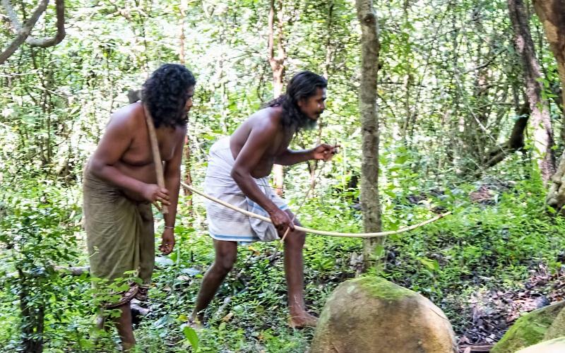Фото: Деревня ведов - Достопримечательности Шри-Ланки: ТОП-14