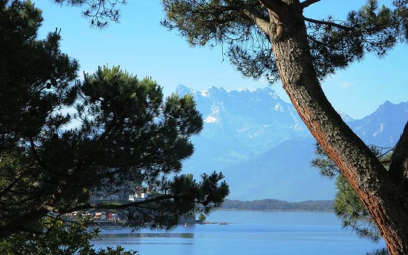 Фото: Женевское озеро - Достопримечательности Швейцарии: ТОП-16