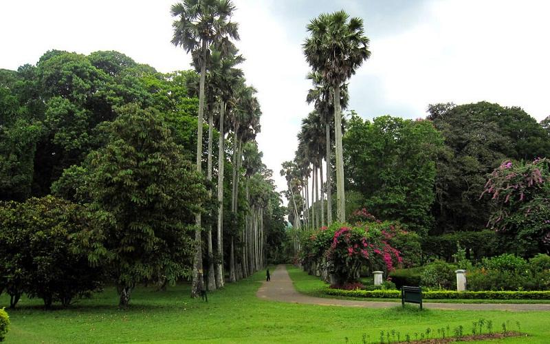 Фото: Канди - Достопримечательности Шри-Ланки: ТОП-14