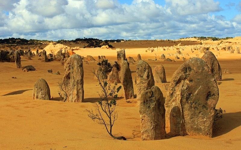 Фото: Скалистая путсыня Пиннакли - Достопримечательности Австралии: ТОП-15
