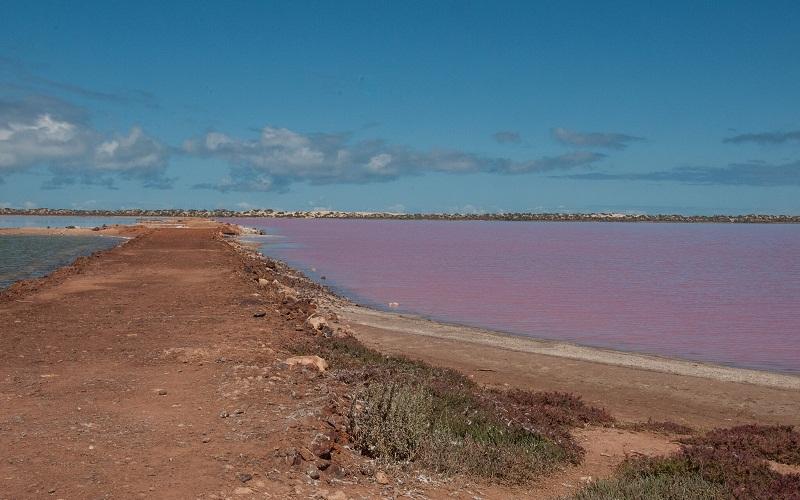 """Фото: """"Розовое озеро Хиллер"""" - Достопримечательности Австралии: ТОП-15"""