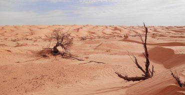 Фото: Достопримечательности Туниса: ТОП-14