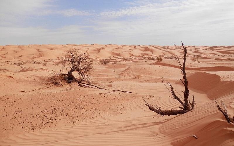 Фото: Пустыня Сахара - Достопримечательности Туниса: ТОП-14