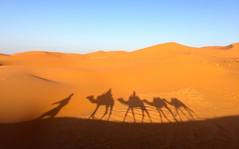 Фото: Пустыня Сахара - Достопримечательности Марокко: ТОП-11