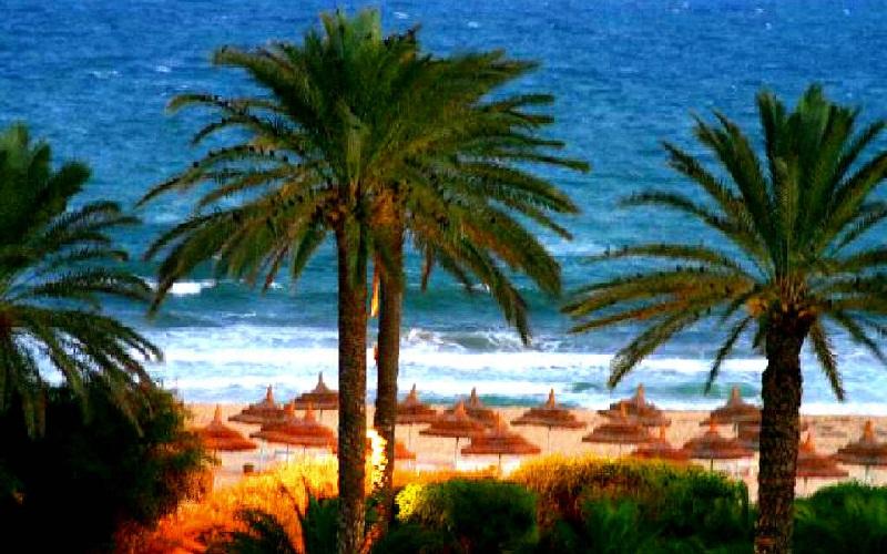 Фото: Хаммамет - Достопримечательности Туниса: ТОП-14