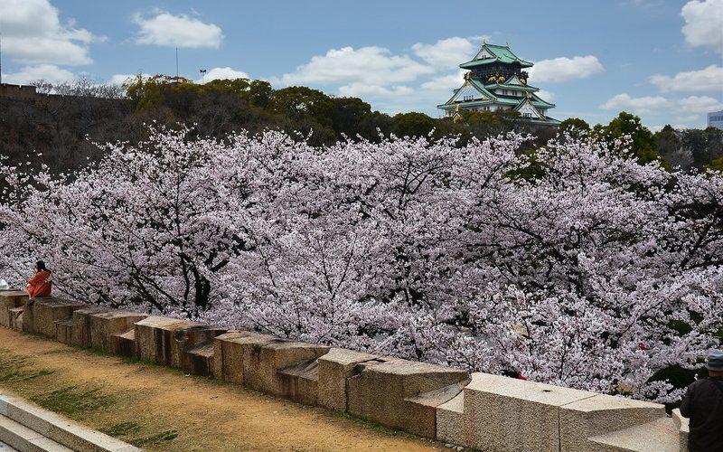 Фото: Осака - Достопримечательности Японии: ТОП-14