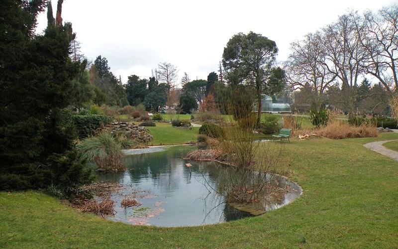 Фото: Ботанический сад - Достопримечательности Женевы: ТОП-10