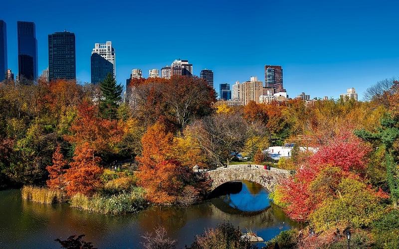 Фото: Центральный парк - Достопримечательности Нью-Йорка: ТОП-15