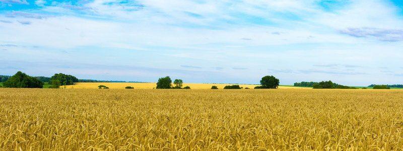 Фото: Украина - путеводитель, лайфхаки