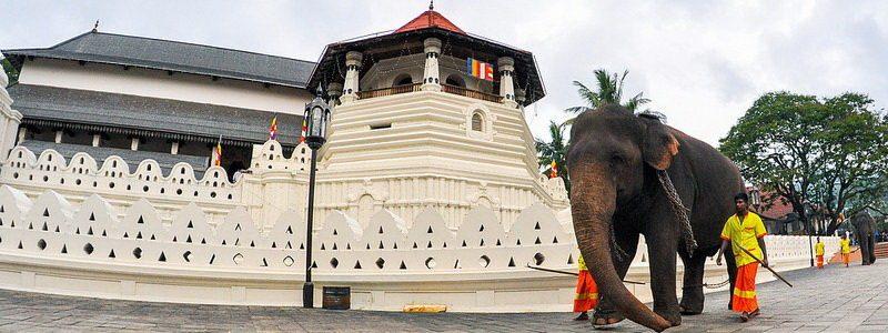 Фото: Храм Зуба Будды, Шри-Ланка - обзор, как добраться, лайфхаки
