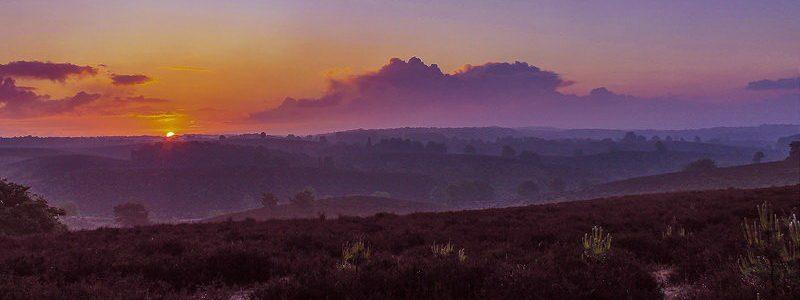 Фото: Национальный парк Велювезом, Нидерланды - обзор, лайфхаки
