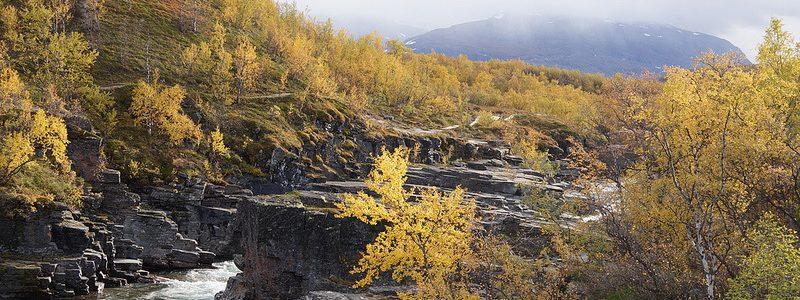 Фото: Национальный парк Абиску, Швеция - обзор, лайфхаки