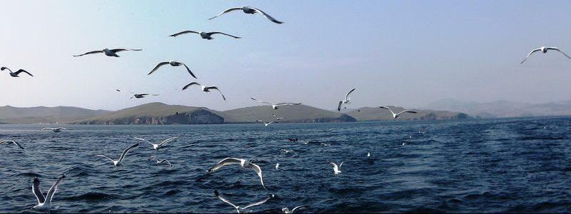 Фото: Озеро Байкал, Россия - обзор, как добраться, лайфхаки